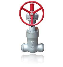 Valvula de Compuerta API Pressure Seal CL900