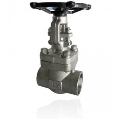 Forged Gate Valve type Bolted Bonnet class 800 lbs