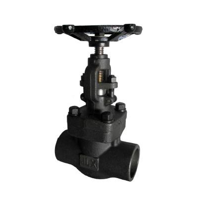 Forged Globe Valve type bolted bonnet class 800 Lbs